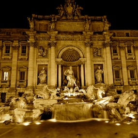 Trevi Fountain by Kristelle Matthew - Buildings & Architecture Statues & Monuments ( water, blackandwhite, trevifountain, rome, night, light,  )