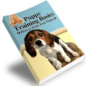 Puppy Training Basics Guide