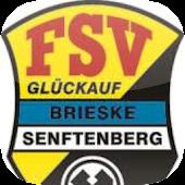 FSV Brieske/Senftenberg