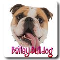 Bailey Bulldog Pictures icon