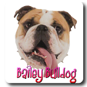 Bailey Bulldog Pictures