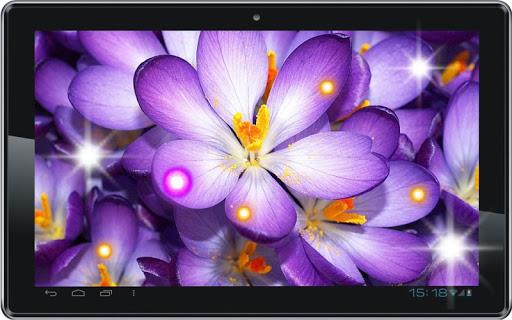 免費個人化App|Crocus Spring Snow|阿達玩APP