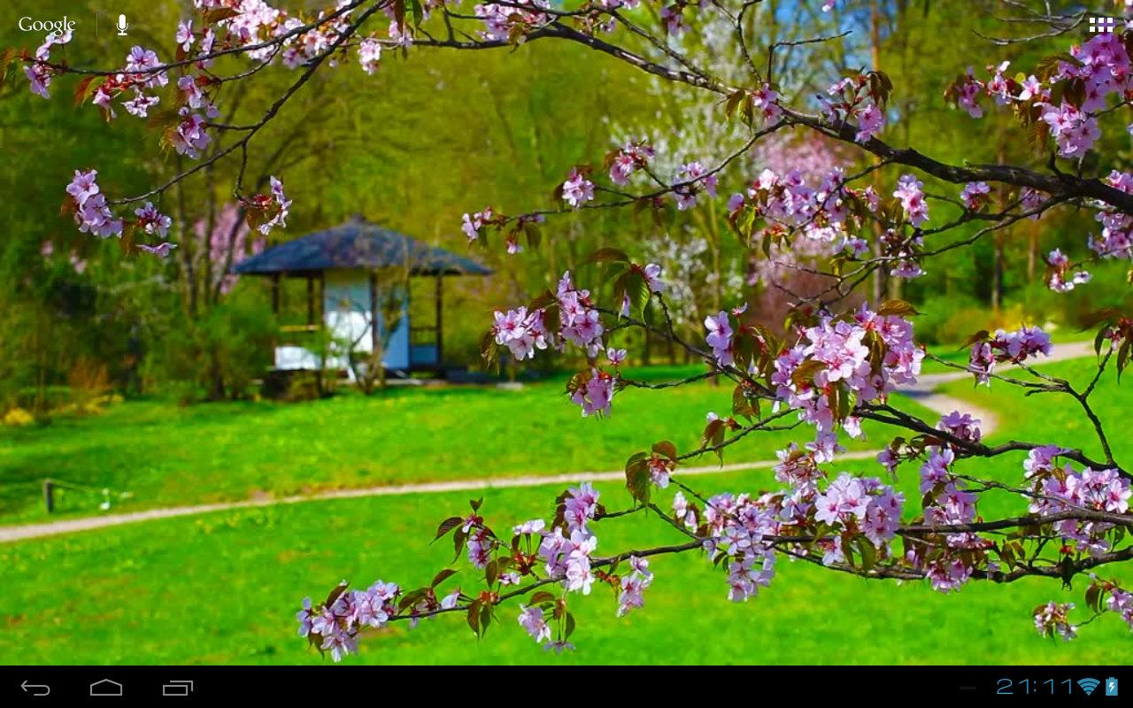 Zen sakura house in garden android apps on google play for Google jardin