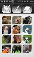 Screenshot of Animal Tap