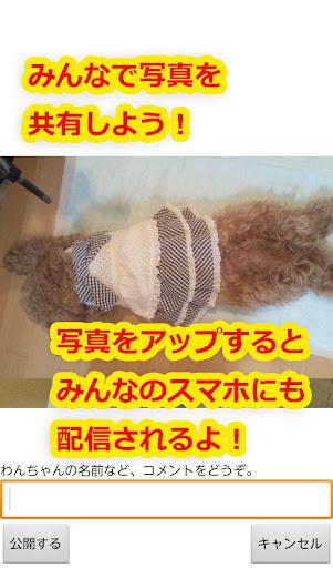 かわいい犬壁紙 【いぬとけい】 個人化 App-愛順發玩APP