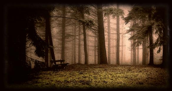 ★Horror Story:Secret Cabin