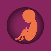Pregnancymeter