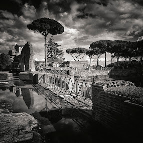 Palatine Hill, Rome by Peter Greenhalgh - Black & White Landscapes ( palatine, roma, rome, ruins, italy, palatino )