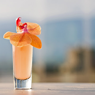 Summertime Sunshine Cocktail