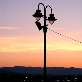 zora by Deki Jiggy - City,  Street & Park  Skylines ( zora, rasveta, street lighting, dawn, reka, jutro, most, lampion, bridge, river )