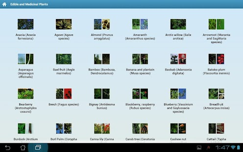 Edible and Medicinal Plants- screenshot thumbnail