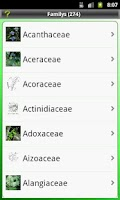 Screenshot of Key: Plant Families