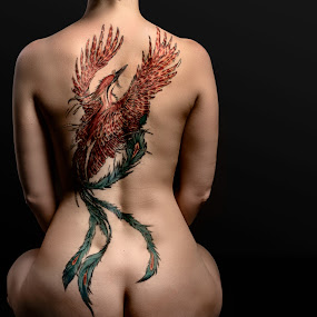Girl with the Phoenix Tattoo by Robby Ticknor - People Body Art/Tattoos ( phoenix )