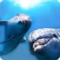 Beautiful Dolphins ParallaxLWP icon