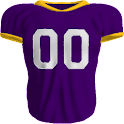 Minnesota Vikings News logo