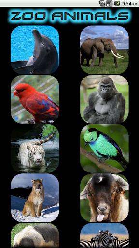 Kids - Zoo Animal Sounds