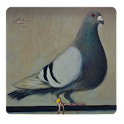 Guide Pouter Pigeons icon
