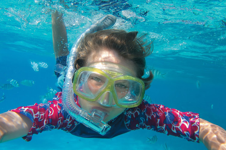 Get up close with nature while snorkeing on a Paul Gauguin cruise.