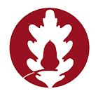 Dalmain Primary School icon