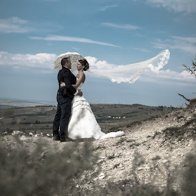 In my dream by Vasiliu Leonard - Wedding Bride & Groom ( wedding photography, wedding, bride and groom, bride, vasiliu leonard,  )