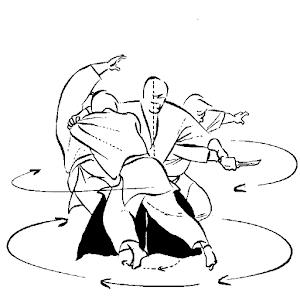 Aïkido et adaptation