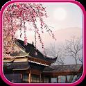 Falling sakura live wallpaper icon