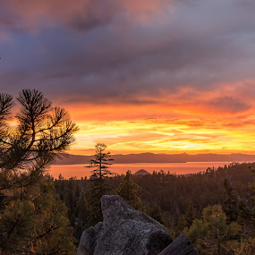 California Gold by Adam Collins - Landscapes Sunsets & Sunrises ( sunset, tahoe, lake, pine trees, gold, glow, lake tahoe )