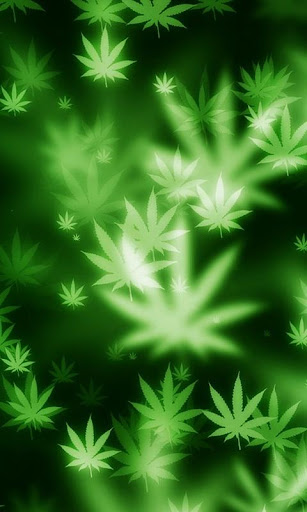 Weed Marijuana wallpaper