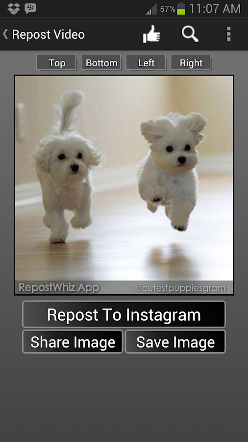 RepostWhiz Repost Videos Photo- screenshot