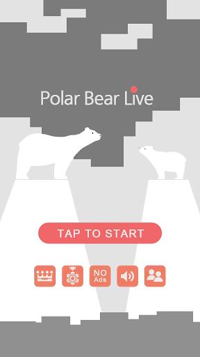Polar Bear Live