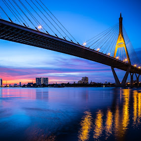 Bhumibol Bridge by Natthawat Jamnapa - Buildings & Architecture Bridges & Suspended Structures ( chao, highway, street, thailand, thai, road, transportation, architecture, engineering, city, bangkok, sky, transport, construction, evening, light, phraya, water, ring, building, cable, twilight, suspension, scenic, urban, landmark, bhumibol, industrial, blue, sunset, background, night, bridge, high, freeway, design, cross, river )