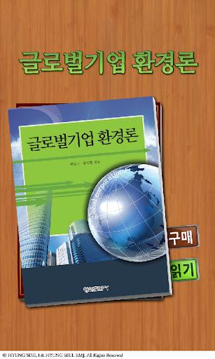 글로벌기업 환경론
