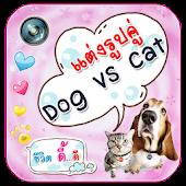 Lovely Dog vs Cat Camera