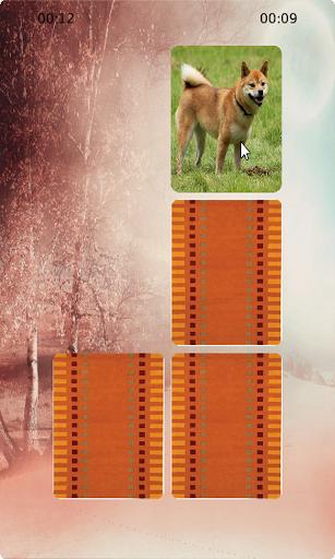 Dogs Matching