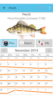 Fish Planet Calendar- screenshot thumbnail