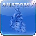 Human Anatomy II icon