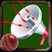 Cricket Stadium Horn
