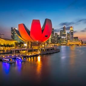Twilight at ASM by GokulaGiridaran Mahalingam - Buildings & Architecture Public & Historical ( lights, skyscrapers, twilight, buildings, bridges, asm, singapore, golden )