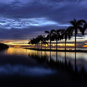 Sunrise Deering Estate  by Jean Perrin - Landscapes Sunsets & Sunrises ( deering estate, florida sunrise, miami, sunrise, miami sunrise, deering estate miami, , relax, tranquil, relaxing, tranquility )