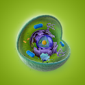 Cell Structure icon