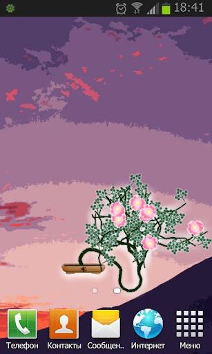 Bonsai Live Wallpaper