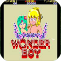 Wonder Boy in Land icon