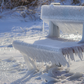 Sit and Chill by Andy Barrow - Artistic Objects Furniture ( winter, cold, bench, seat, ice, frozen )