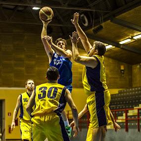 Stella azzurra 1 divisione by Nando Scalise - Sports & Fitness Basketball