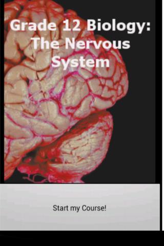 Grade 12 Biology: Nervous Sys