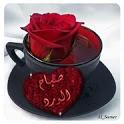 بطاقات صباح الخير حبيبي icon