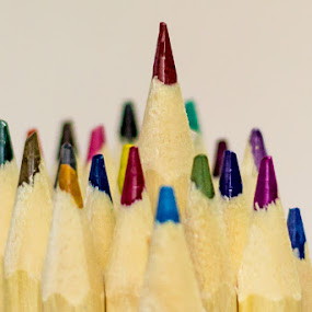 Pencils by Patrick Provencher - Artistic Objects Other Objects ( color, crayons, pencils )