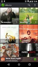 PlayerPro Music Player Screenshot 1