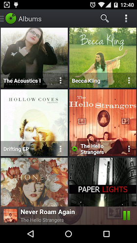 PlayerPro Music Player 3.02 APK