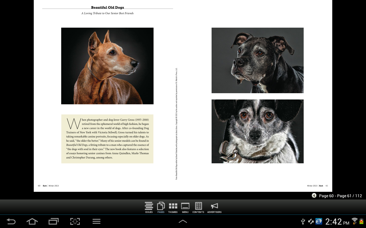 The Bark: dog culture magazine - screenshot